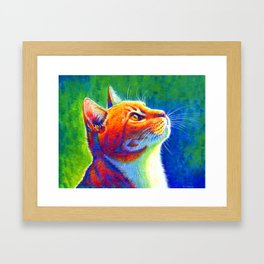 Rainbow Cat Portrait Framed Art Print