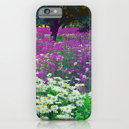 Wildflowers Daisies Shaded by Trees Fine Art Photo iPhone Case
