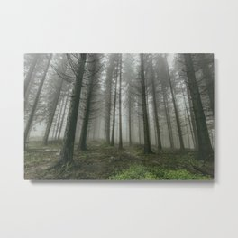 Winter forest trees #12 Metal Print