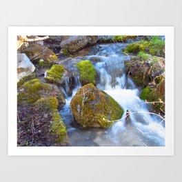 Mossy Rock Falls Montana Whitewater Woodlands Waterfall Green Moss Art Print