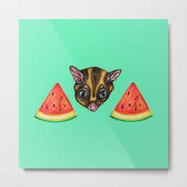 Sugarglider & Melons Metal Print
