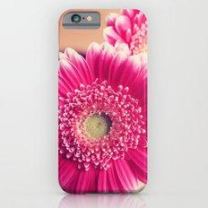 Pink Gerber Daisies  Slim Case iPhone 6s
