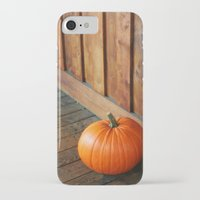 pumpkin iPhone & iPod Cases featuring Pumpkin by MSG Imaging