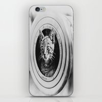 kitten iPhone & iPod Skins featuring Kitten by PureVintageLove