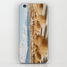 Paiute Land iPhone & iPod Skin