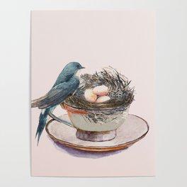 Bird nest in a teacup Poster