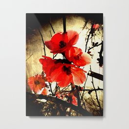 Spring Red 3, Royal Botanical Gardens - Melbourne Metal Print