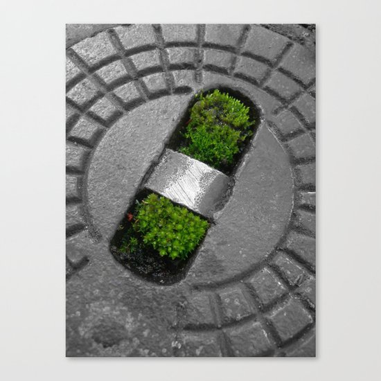 little green Canvas Print