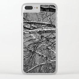 Bare winter tree with snow-laden boughs Clear iPhone Case
