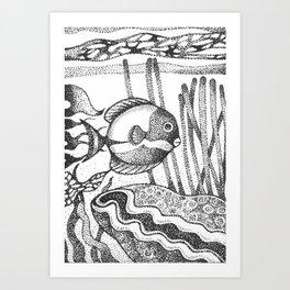 fish6 Art Print