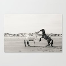 Wild Horses 4 - Black and White Canvas Print