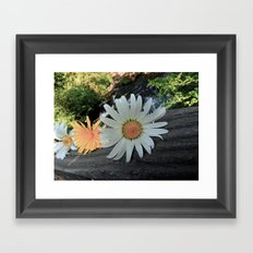 Washougal  Framed Art Print