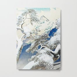 The Snows at Kenn Metal Print