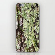 Tree Bark Lichen iPhone & iPod Skin