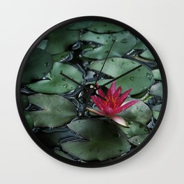 Lost Among the Lily Pads Wall Clock