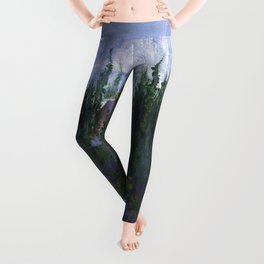 Denali Leggings