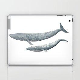 Blue whales (Balaenoptera musculus) - Blue whale Laptop & iPad Skin