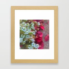 Fall sidewalk Leaves in Kenosha Framed Art Print