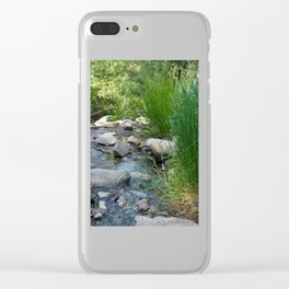 Stream in Mt Lemmon Clear iPhone Case