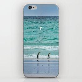 Falkland Island Seascape with Penguins iPhone Skin
