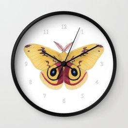io moth (Automeris io) male specimen 1 Wall Clock