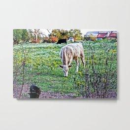 I See Cows Metal Print