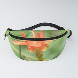 Columbine in the Breeze Fanny Pack
