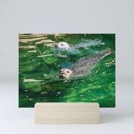 Seals Swimming In Emerald Waters Mini Art Print