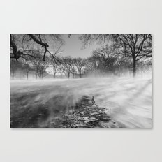 In The Blizzard Canvas Print