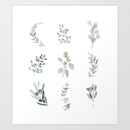 Botanical elements Art Print