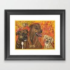 Dogs Bailey , Jake & Maggie Framed Art Print
