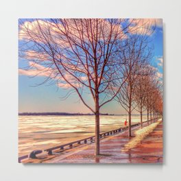 Bare Trees and Frozen Lake Metal Print