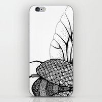 beetle iPhone & iPod Skins featuring Beetle by Freja Friborg