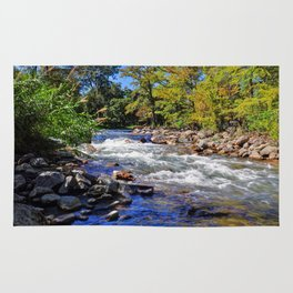 Guadalupe River Rug