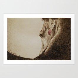 Native Horse Art Print