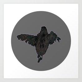 Fledgling; Art Print