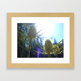 Let it Glow Framed Art Print