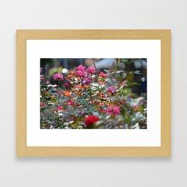 Pink & Red Framed Art Print