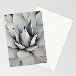 Silver Cactus Stationery Cards