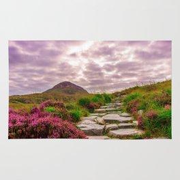 Stone Steps Up An Irish Mountain Rug