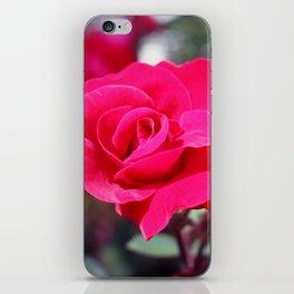 A Rose Says Love iPhone Skin
