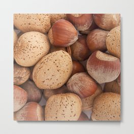 Hazelnuts and almonds Metal Print
