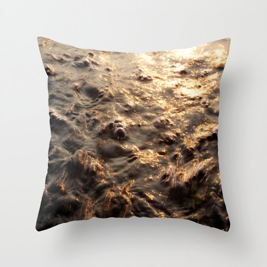 On the trail of the gold Throw Pillow