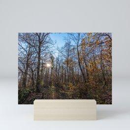 Sunrise in the woods Mini Art Print