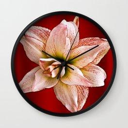 Amaryllis, Alone Wall Clock