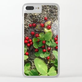 Goldfield Clear iPhone Case