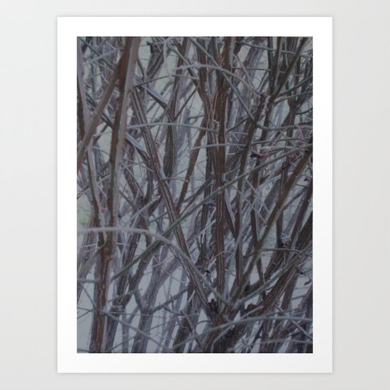 Branches and Lines Art Print