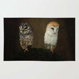 Barn And Tawny Owl Rug