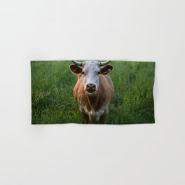COW - FIELD - GREEN - VALLEY - NATURE - PHOTOGRAPHY - LANDSCAPE Hand & Bath Towel