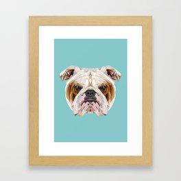 English Bulldog // Blue  Framed Art Print